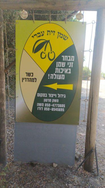 שמן זית עברי, צילום: שמן זית עברי