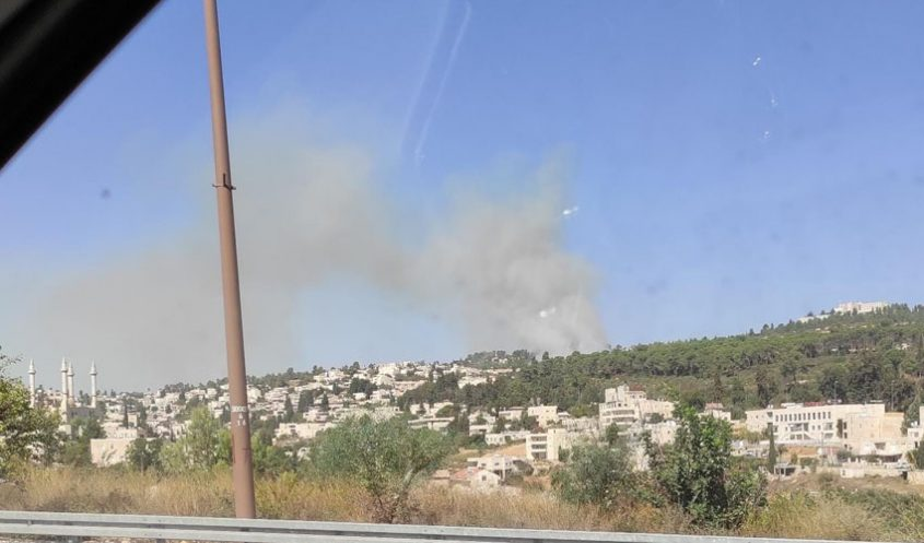 השריפה סמוך לקרית ענבים וכביש 1 (צילום: פרטי)