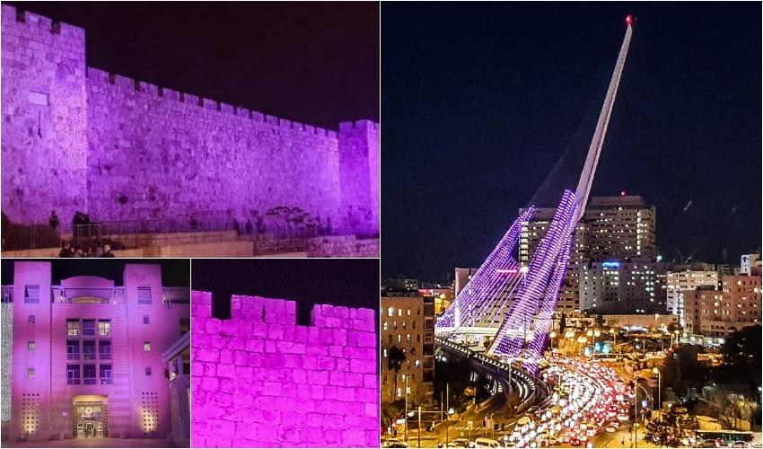 ירושלים סגולה (צילום: אלי מנדלבאום)