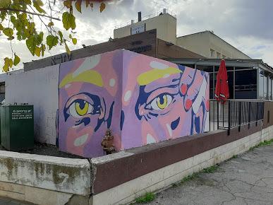"""ציורי הקיר בתלפיות (צילומים: ד""""ר אדם אקרמן)"""