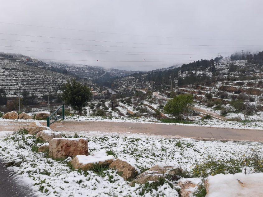 רכס לבן, שלג בירושלים 2021 (צילום: דודו בן אור)
