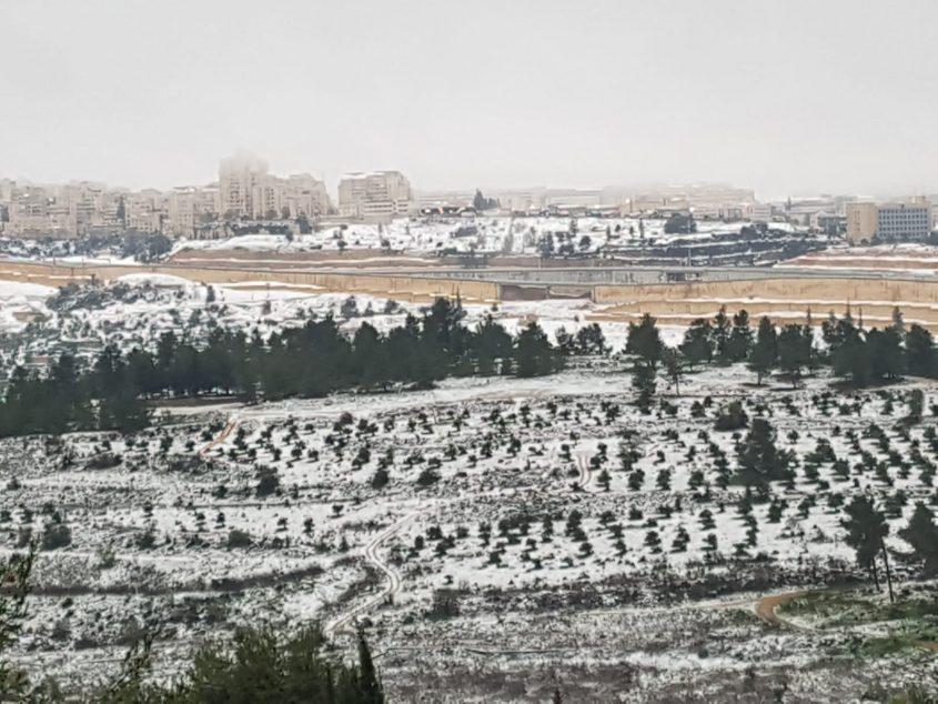 מבט על העיר מרכס לבן, שלג בירושלים 2021 (צילום: דודו בן אור)