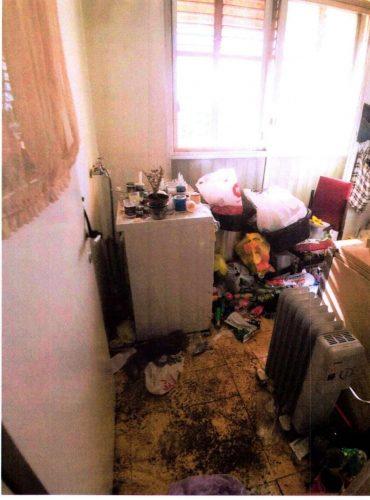 הממצאים שאותרו בדירה (צילום: עיריית ירושלים)