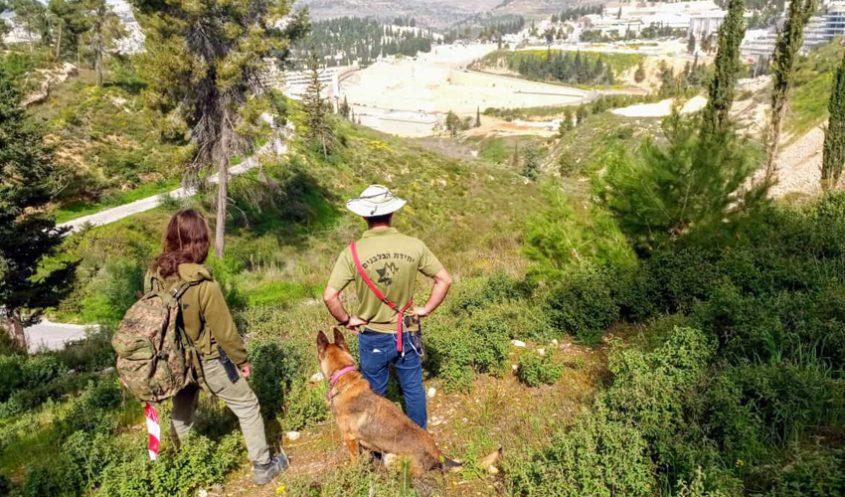 החיפושים אחר אבידן מיכאל גנטשר (צילום: יחידת הכלבנים לישראל)