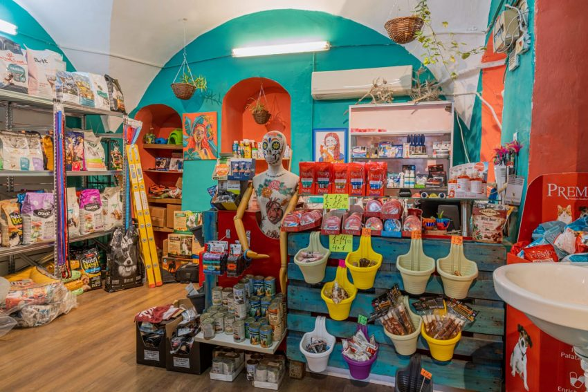 סופדוג חנות מזון וציוד ירושלמית לבעלי חיים (צילום: אור הרשקוביץ)