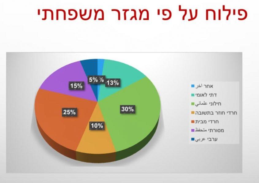 נגע הסמים בירושלים - פילוח לפי מגזרים. צילום מסך