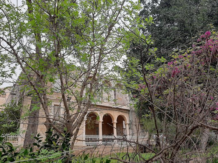 מבט מהגינה למבנה מוזיאון הטבע (צילום: אדם אקרמן)