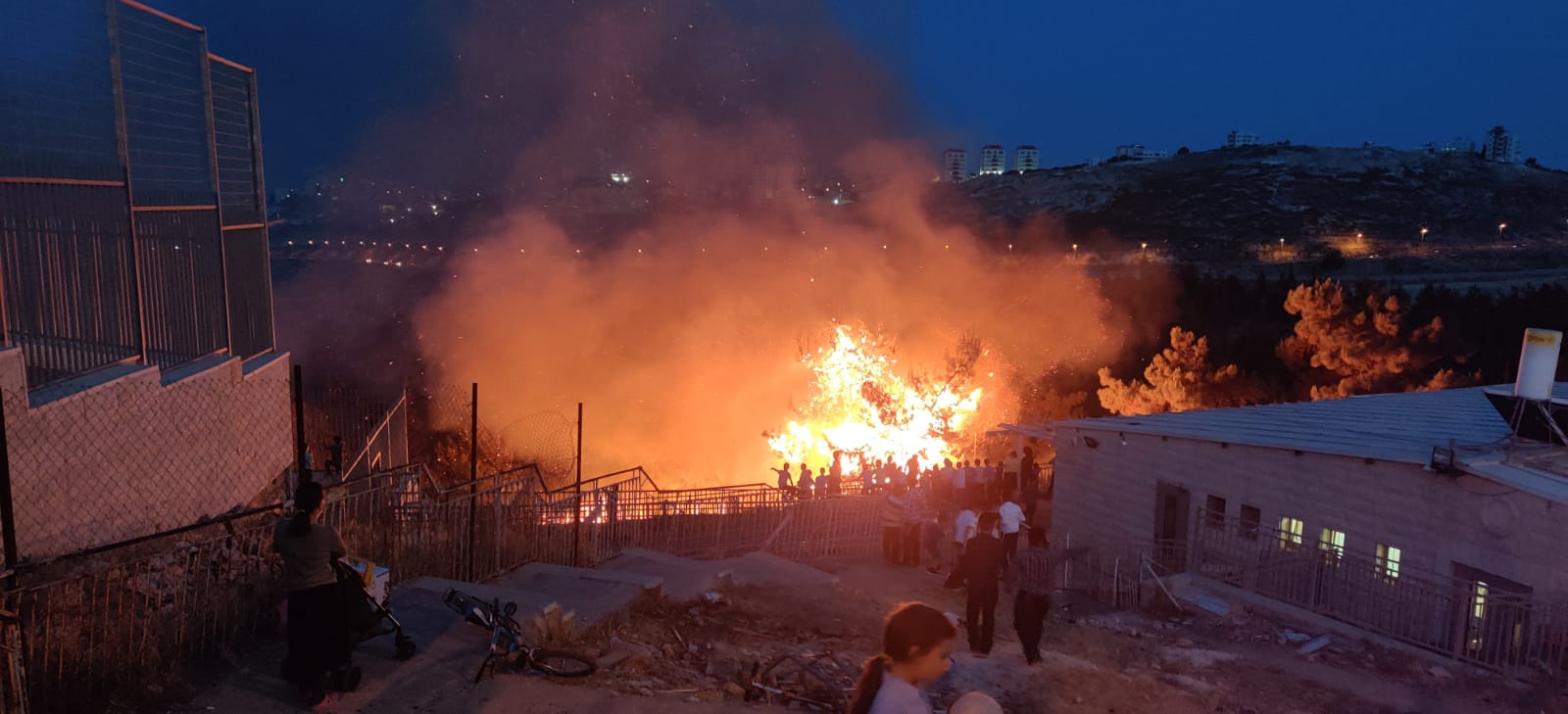 שריפת הקוצים בנוה יעקב (צילום: פרטי)