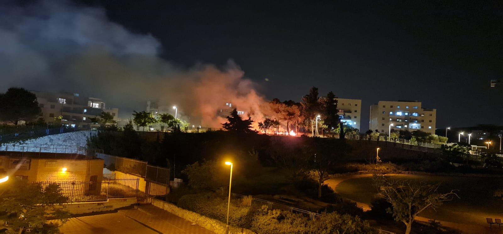 הפארק שהוצת הלילה בפסגת זאב (צילום: מפורסם לפי סעיף 27 א לחוק זכויות היוצרים, להוספת קרדיט נא לפנות למערכת)