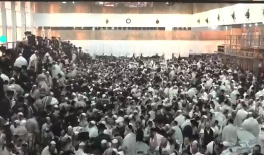 זירת האירוע בגבעת זאב (צילום: מפורסם לפי סעיף 27 א לחוק זכויות היוצרים, להוספת קרדיט נא לפנות למערכת)
