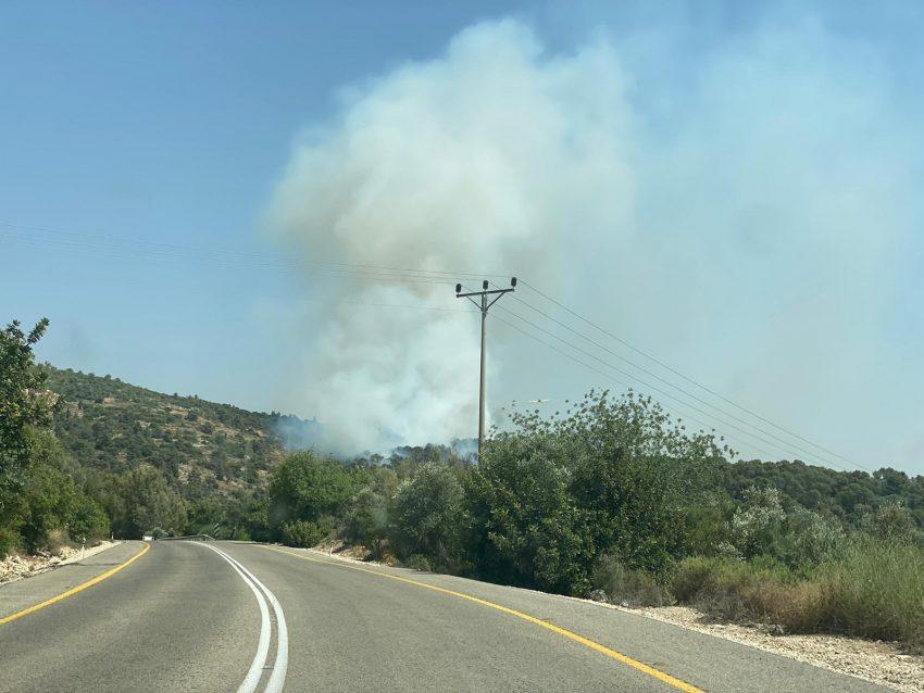 השריפה סמוך לנס הרים (צילום: נאור סעדון)