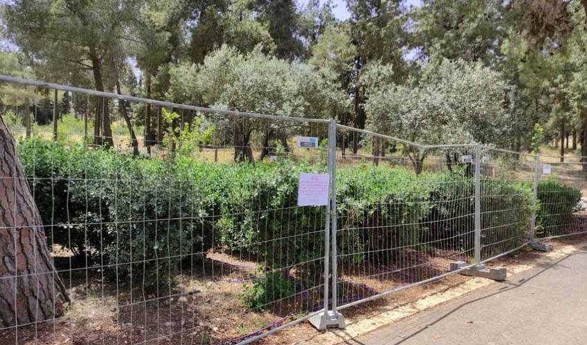 המתחם בגן סאקר, שבו רוסס החומר המסרטן (צילום: פרטי)