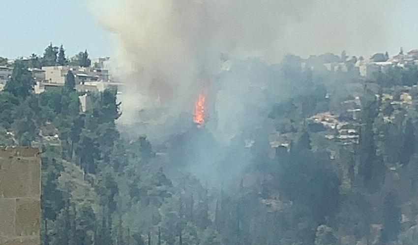 שריפה, סמוך למבשרת (צילום: כבאות והצלה ירושלים)