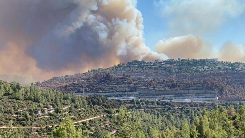 העשן המיתמר מהשריפה בשורש-שואבה (צילום: נועה דנין)