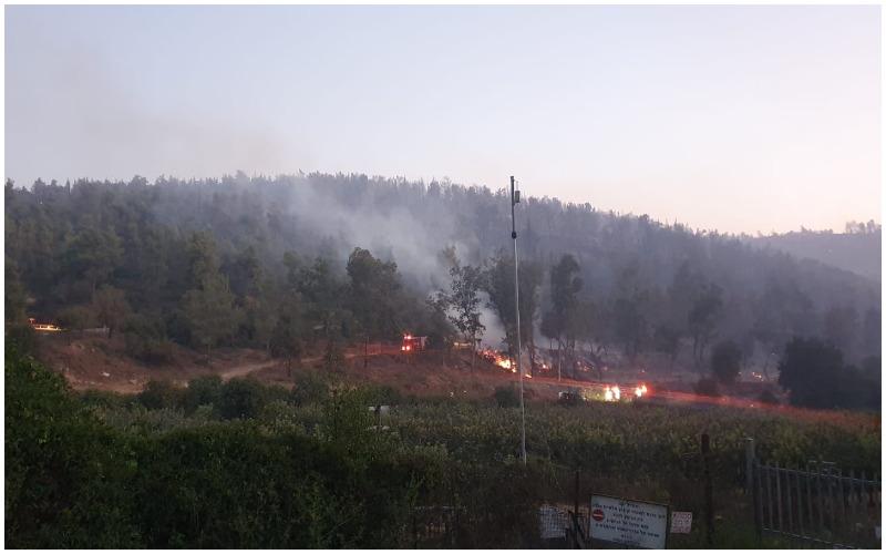 השריפה בהרי ירושלים - הערב (צילום: דוברות המשטרה)
