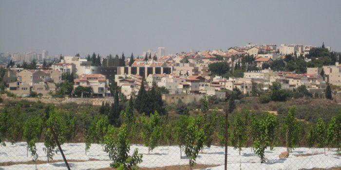 ארנונה (צילום: מתוך ויקפדיה)
