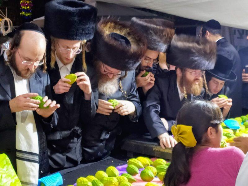 שוק ארבעת המינים בירושלים (צילום: אילן כהן)