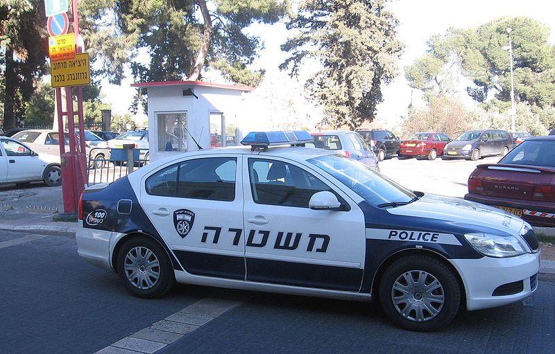 ניידת משטרה ( צילום: Gellerj, מתוך ויקפדיה)