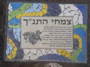 שלט צמחי המקרא (צילום: אדם אקרמן)