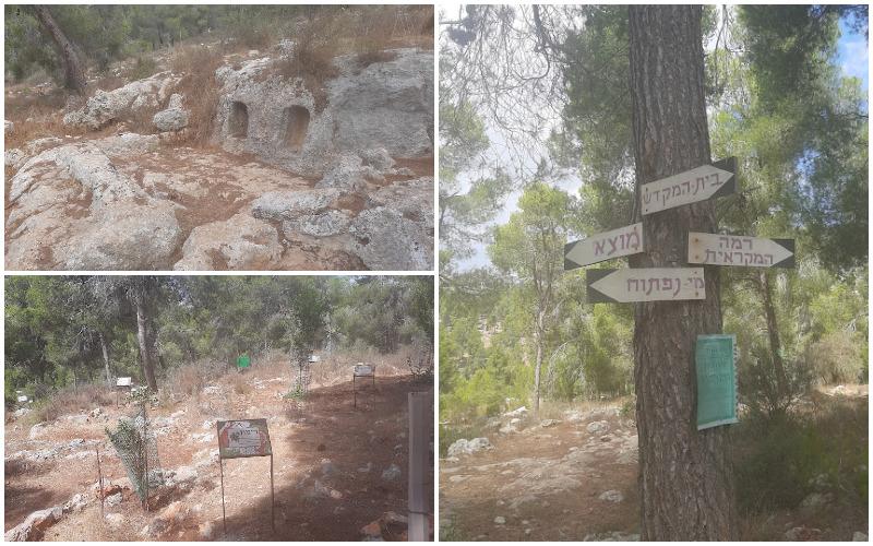 """פארק ארץ התנ""""ך ביער רמות (צילומים אדם אקרמן)"""